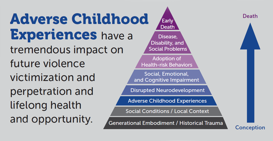 Adverse Childhood Experiences have a tremendous impact on future violence, victimization and perpetration, and lifelong health opportunity.