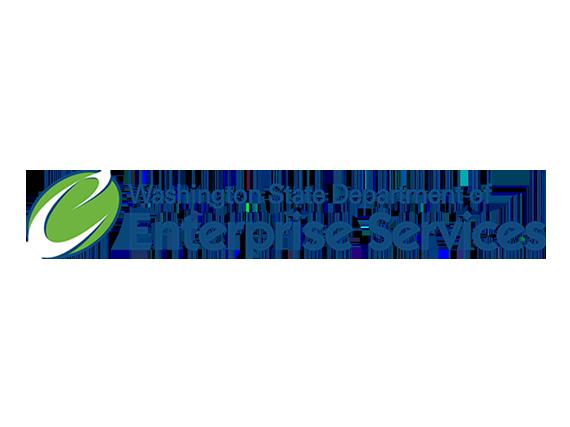 Washington Enterprise Services Logo