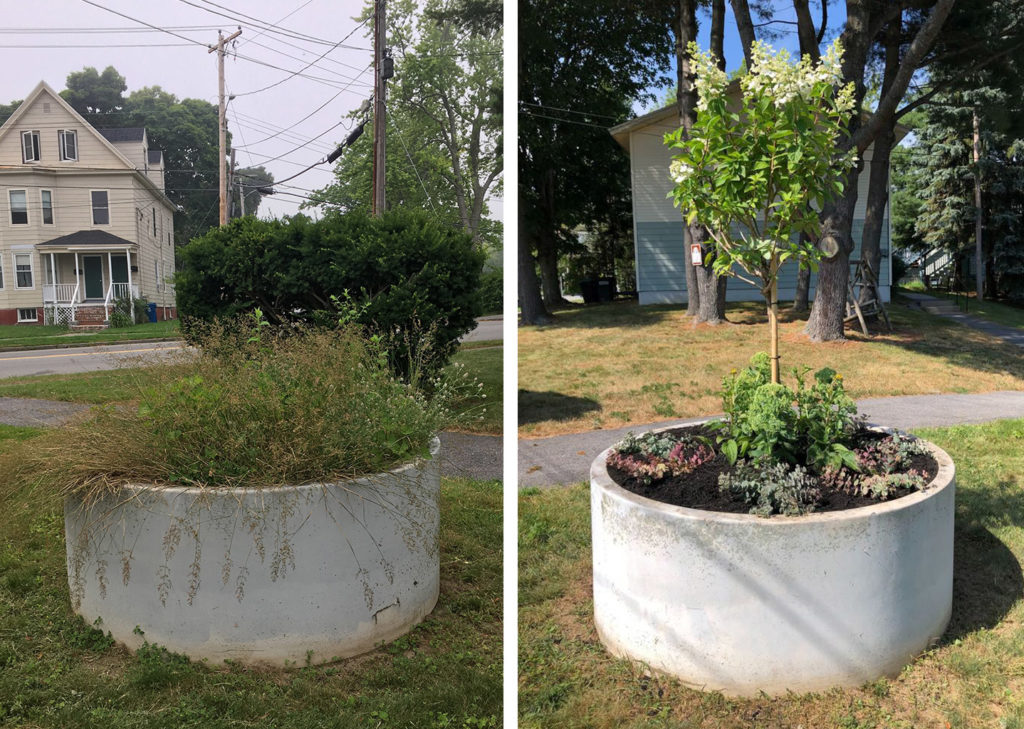 Washington Gardens Planter Before and After