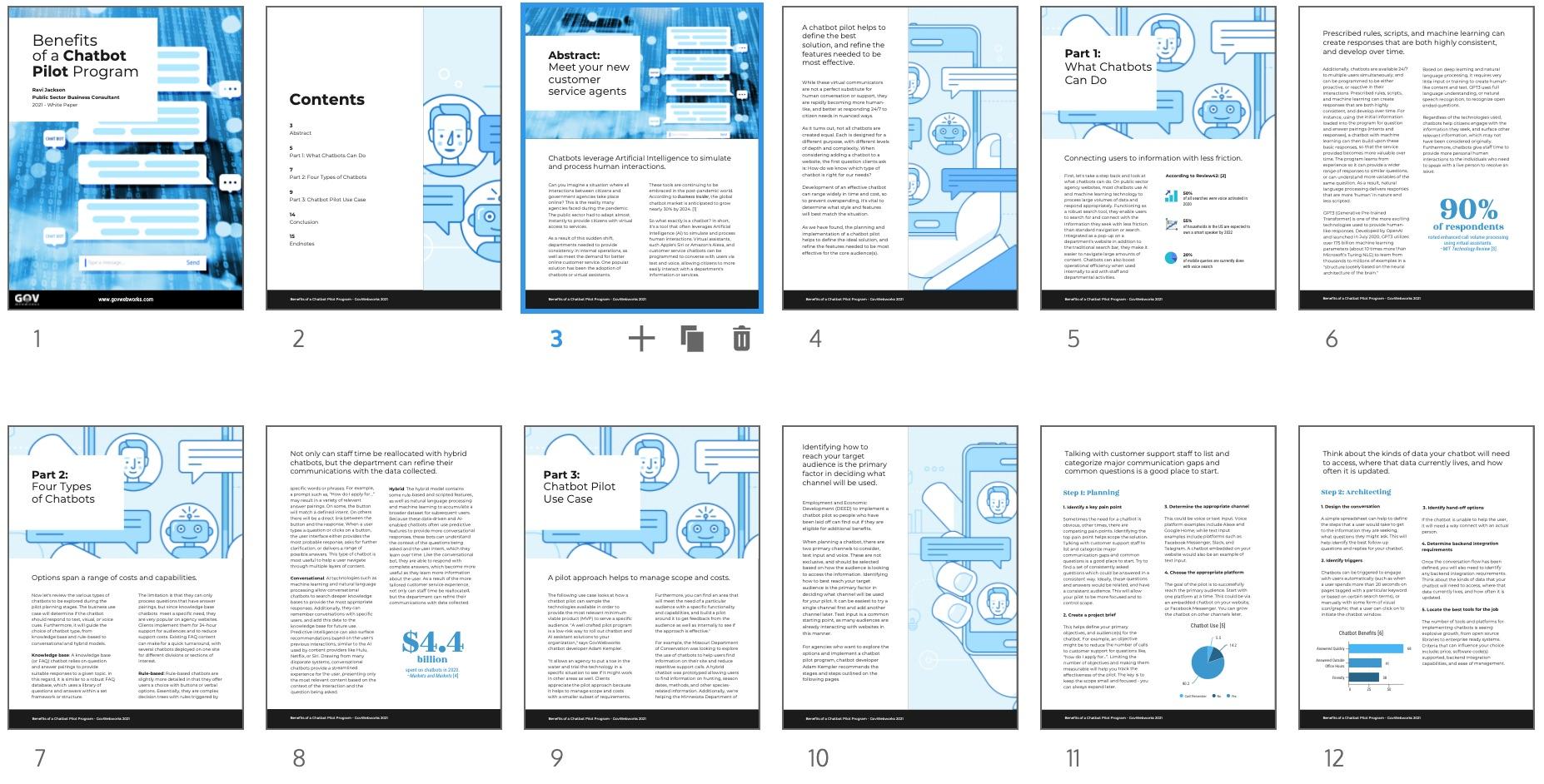 Chatbot Pilot White Paper